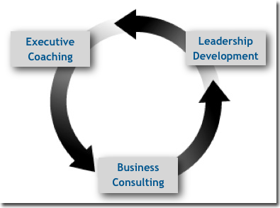 Business Development Cycle | The Wide Open Group | Steven Granek